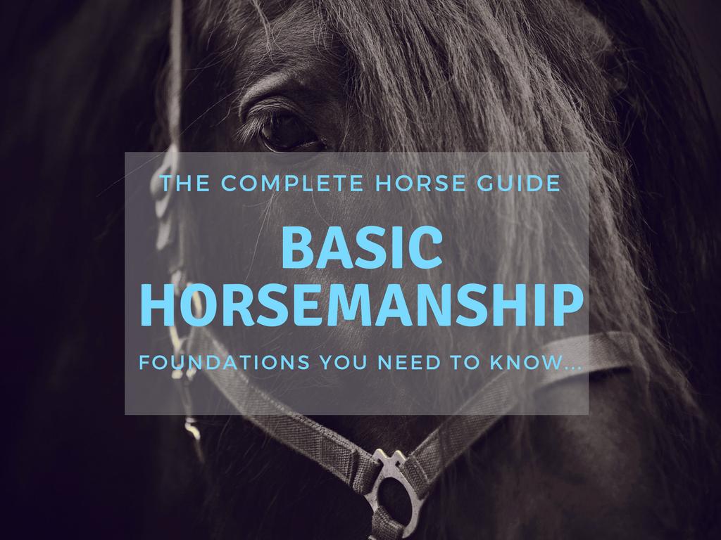 TCH Thumbnail Basic Horsemanship