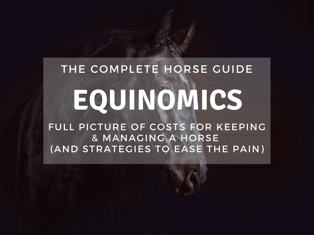 TCH Thumbnail Equinomics