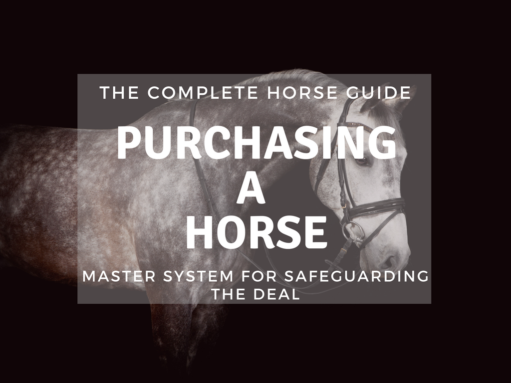 The Complete Horse Guide to Purchasing a Horse