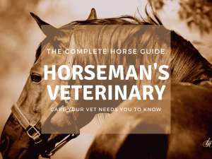 The Complete Horse Guide to Horseman's Veterinary