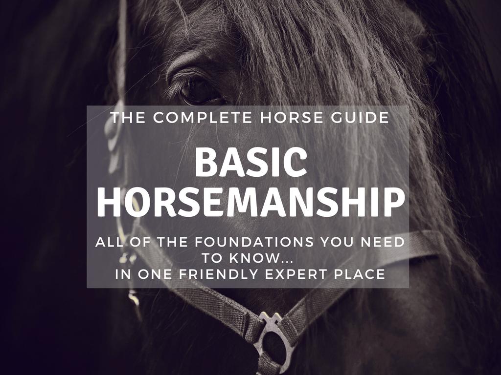 TCH Thumbnail Basic Horsemanship-2