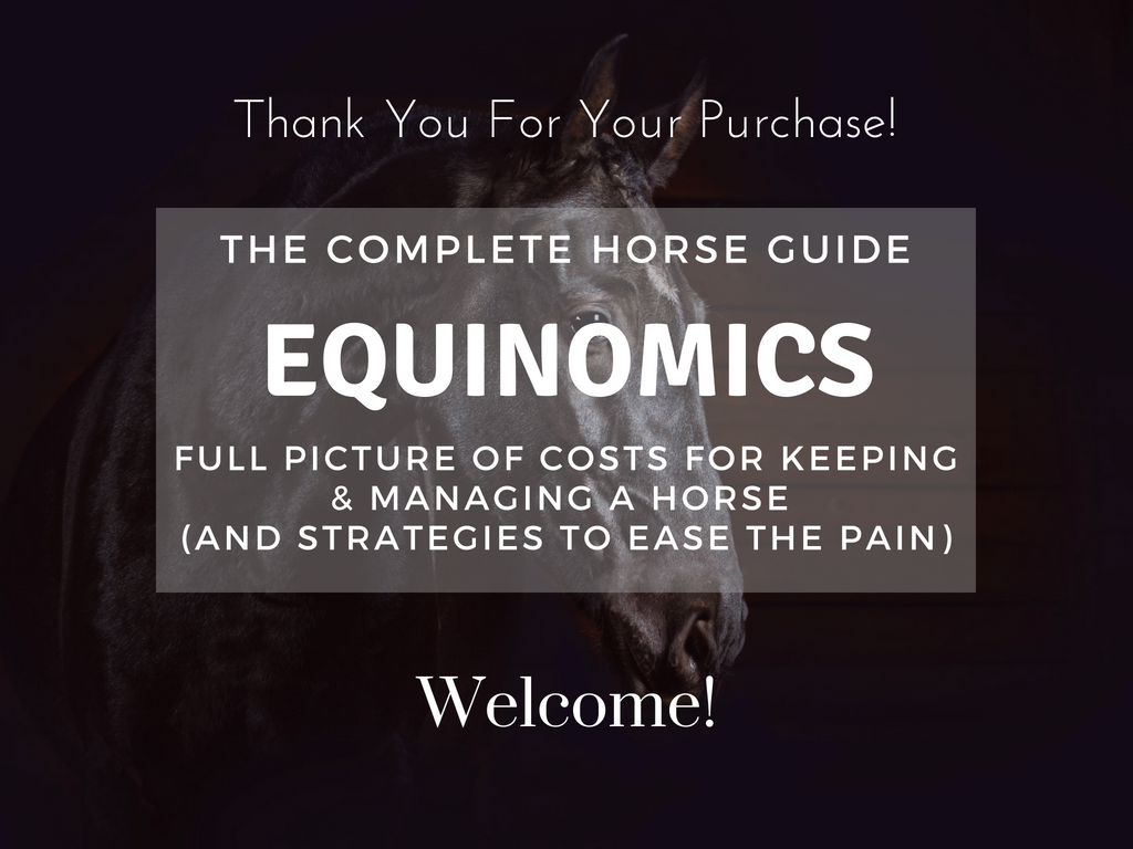 TCH Equinomics Thank You