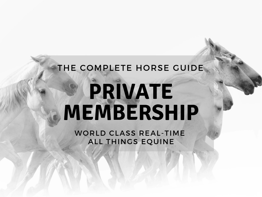 The Complete Horse Thumbnail Membership